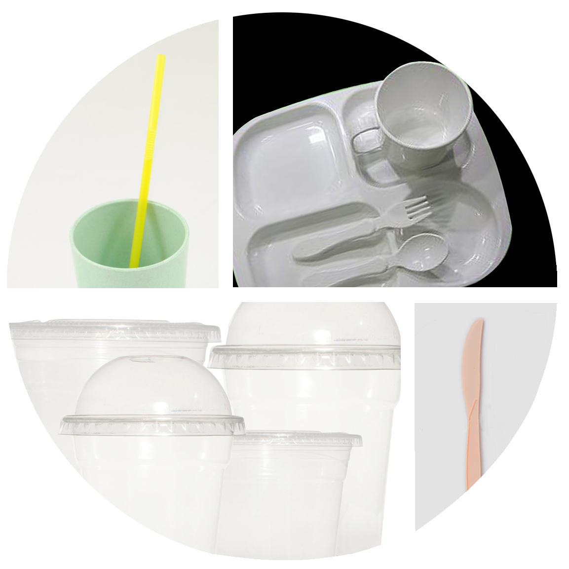 Bagasse Product Examples